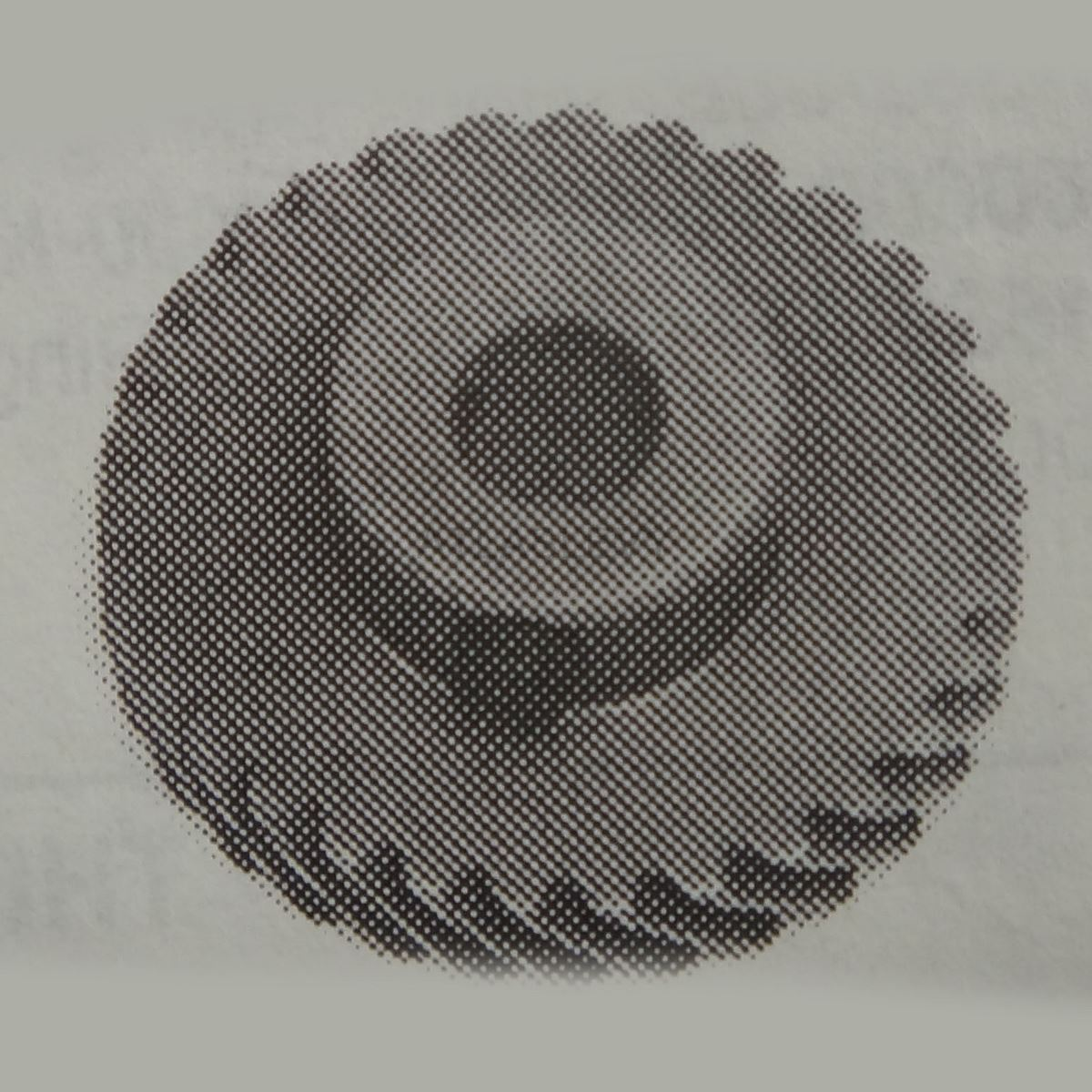 Hook Shaft Gear Large With Screws B 1816 051 0a0